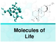 Ch 3 The Molecules of Life(1-13)