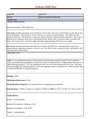 South Soap_Note_Template (1).docx
