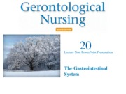 The Gastrointestinal System 2.ppt