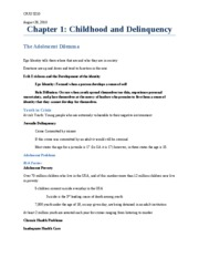 Chapter 1_Childhood and Delinquency