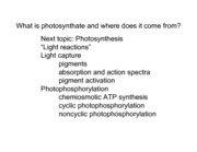 MCDB 1B Part 2 Dr. Finkelstein Lecture 9 Photosynthesis