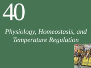 Ch40-1 Lecture-Physiology, Homeostasis, and Temperature Regulation(2)