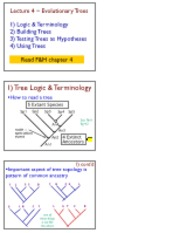 Lecture 4, Evolutionary Trees