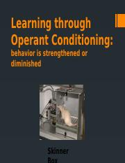 Learning through Operant Conditioning