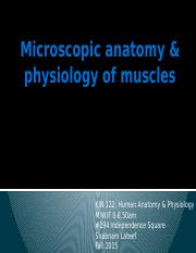 Microscopic+Anatomy+of+Muscle.pptx