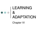 Learning_Adaptation