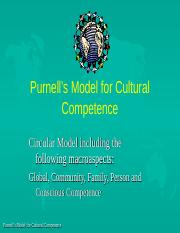 purnmodel.ppt