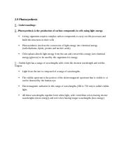 2.9 Photosynthesis Worksheet .docx - IB Biology Chapter 2 ...
