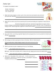 anim_cardiac_cycle_worksheet.pdf