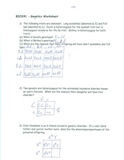 Genetics Worksheet