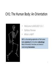 111 CH1-Orientation to the Body