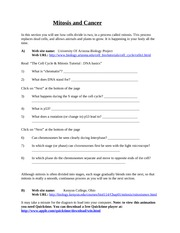 mitosis & cancer internet worksheet