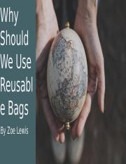 Why should we use reusable bags project