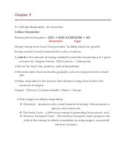 Chapter 9 Biology Notes.docx