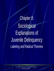 Juvenile Delinquency (Chapter 8)