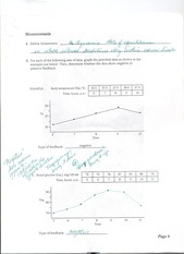 Anatomical Terms Worksheet 6