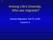 Presentation 4 - What groups have migratory representatives