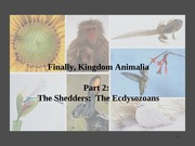Bio 94 Animalia Part 2 (Ecdysozoans) F 14