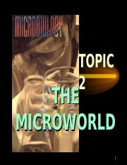 Chapter 2- The Microworld