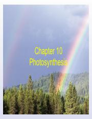 Chapter 10-Photosynthesis