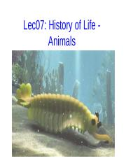 Lec07 History of Life Animals post-1.pptx