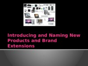 Ch 6 Introducing and Naming New Products and Brand Extensions (1)