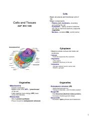 Ch.3 Cells and Tissues Print.pdf