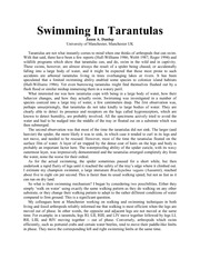 swimming tarantula