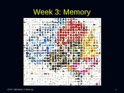 Lecture3_Memoryposted