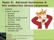 Topic 09-Adrenals Spring 2015-NOTES