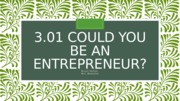 3.01 Could You Be An Entreprenuer