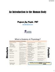 1 Intro to the Human Body student handout