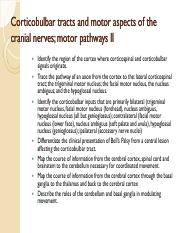 611 Corticobulbar tracts and motor aspects of the cranial nerves MORRIS-WIMAN.pdf