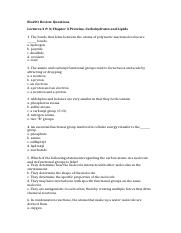 Bio201 Review Questions ch3 Proteins Carbs & Lipids.docx