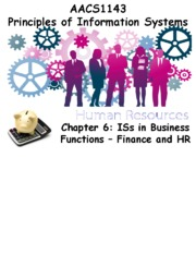 Chapter 6 ISs in Business Functions - Finance and HR - Students 201516