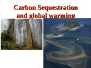 Carbon+Sequestration