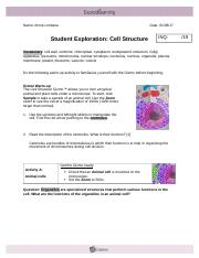 Gizmo Cell Structure Revised by Annie Limbana.docx