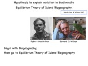 13+Theory+of+Island+Biogeography