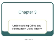 Criminal Justice Chapter 3 Slides
