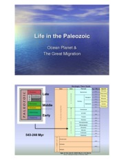 Sp08.103PaleozoicLife2