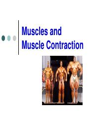 Lect02_Muscle_Muscle_Contraction cell bio