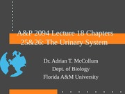 A&P2094Lecture18