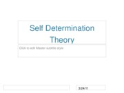 Self%20Determination%20Theory%20PPT%20to%20post