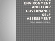CONTROL ENVIRONMENT AND CORP GOVERNANCE SELF ASSESSMENT