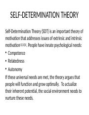 SELF-DETERMINATION-THEORY