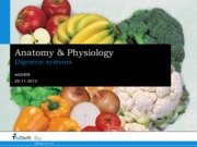 A&P Lecture 10 - Digestive System.pdf