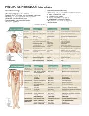 INTEGRATIVE PHYSIOLOGY-Endocrine System