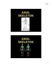 ANP 300 - Lecture 4 - Axial Skeleton (color)