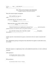 Week 5 - DNA Worksheet.docx