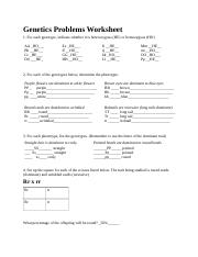 Genetics Problems Worksheet.docx